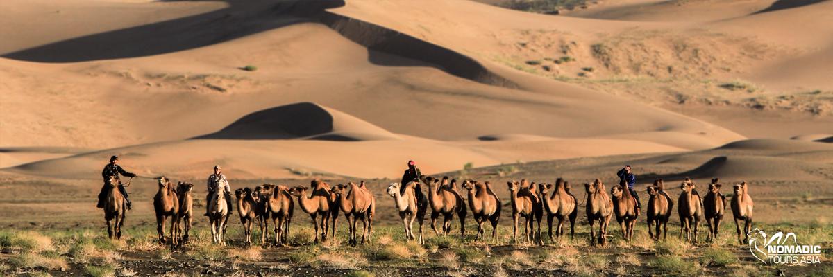 Gobi Desert of Mongolia