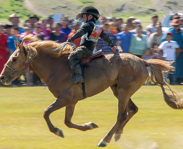 NAADAM BY NOMADS TOUR
